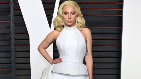 Lady Gaga Dive Tour