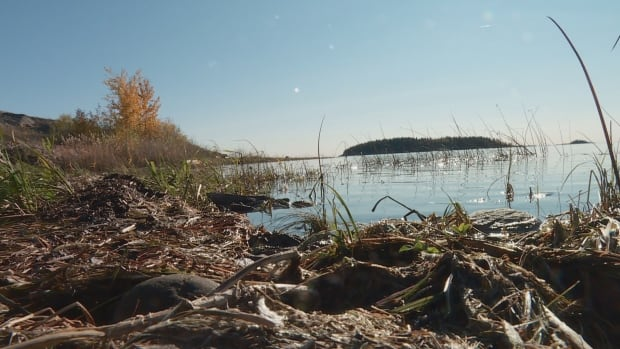 Views of the Lake Athabasca near Fort Chipewyan.