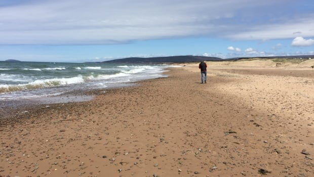 View of Inverness Beach.