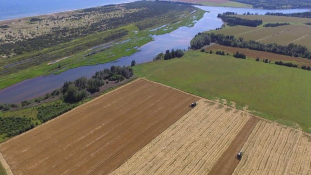 The average age of P.E.I. farm operators is increasing, but there are also more younger farmers.