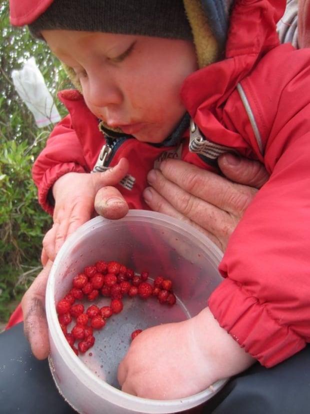 Cranberry treats