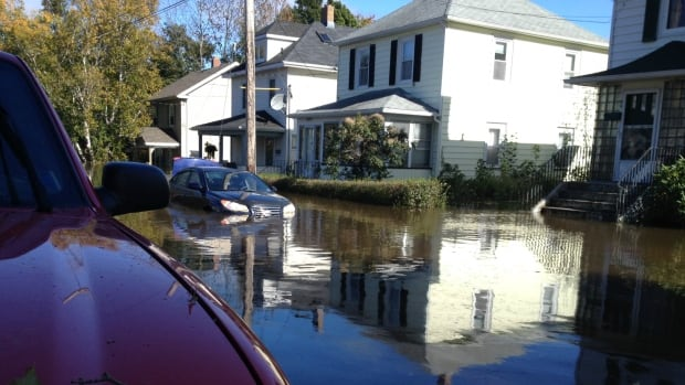 Thousands of Cape Breton residents are expected to file insurance claims for flood damage but many may not be covered.