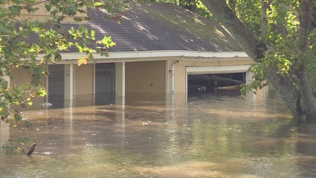 Terry Drohan's five-bedroom house was flooded in the Thanksgiving Day rainstorm.