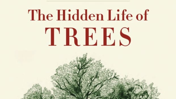 Cover of Peter Wohlleben's book, The Hidden Life of Trees.