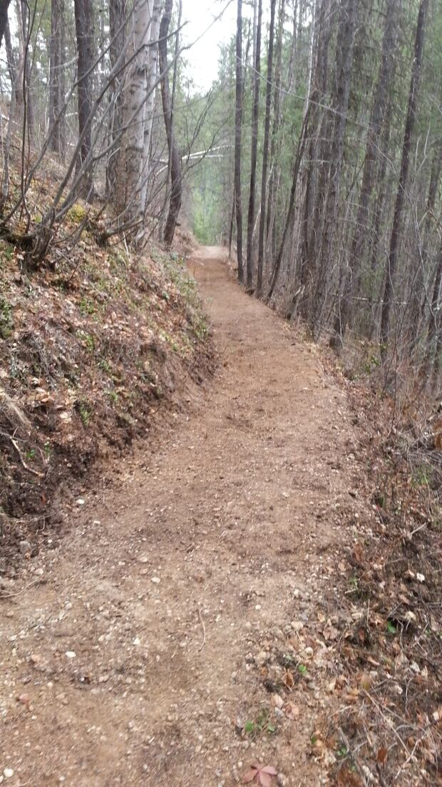 Kootenay National Park trails - Kindersley?