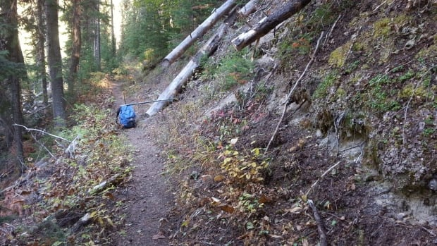 Kootenay Park trails
