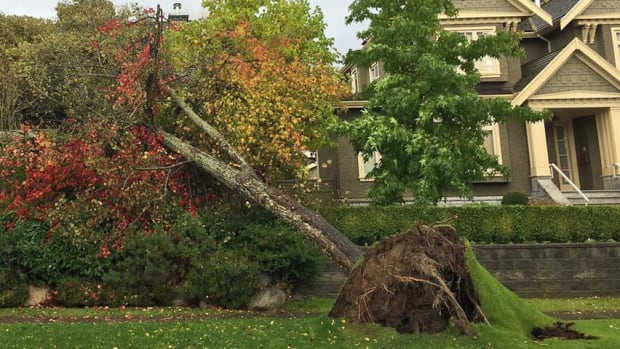 B.C. wind storm