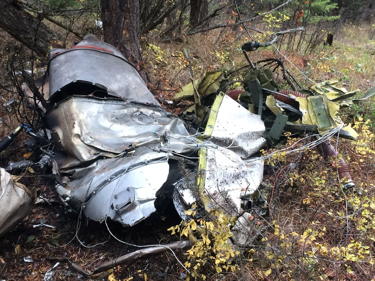 Jim Prentice's plane crash may have been caused by 'incapacitated' pilot, says former flight safety officer