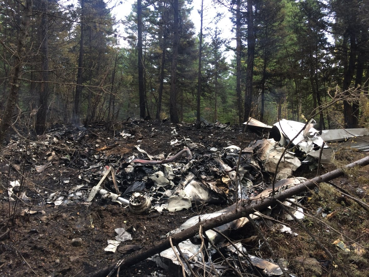 Report into Kelowna plane crash that killed 4 to be released