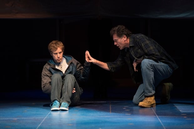 how does mark haddon use the first person narration in the curious incident of the dog in the night  Curious incident of the dog in the night  describe the style of the first person narration  the curious incident of the dog in the night-time by mark haddon.