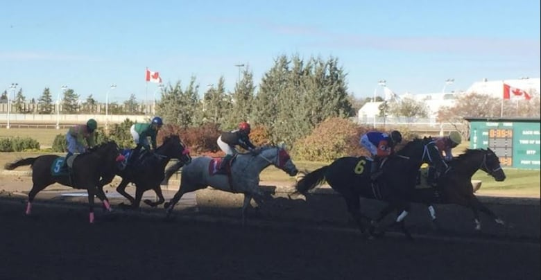 Northlands Race Track