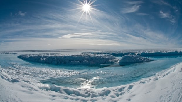 A new study reports humans are responsible for about half of the Arctic sea ice loss  since 1979