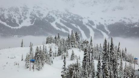 Whistler Blackcomb ski guide dies after 'serious' incident during trip thumbnail