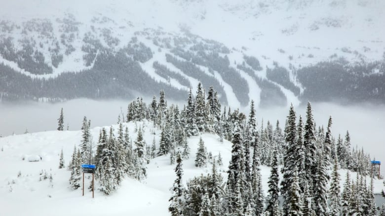 The Whistler Blackcomb Ski Resort after an October snow. The resort is  cutting 60 local jobs that will be carried out at the parent company's  Colorado ...