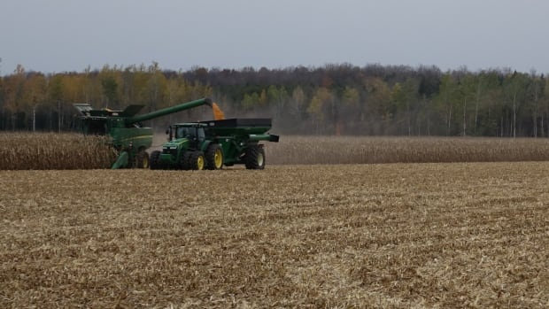 The City of Ottawa has assigned scores to land parcels based on the quality of the soil for farming. Some properties will be downgraded to a general rural designation, while others at set to be protected at prime farmland.
