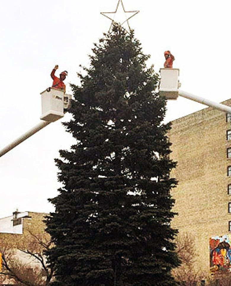 workers put up the christmas tree at city hall in a previous year this years will go up on sunday city of winnipeg - When Does The Christmas Tree Go Up