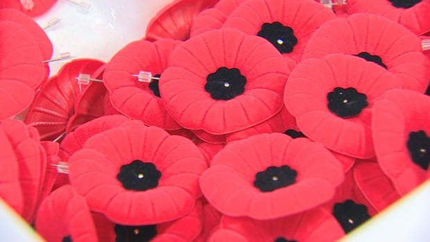 Police have arrested one man and are searching for another after 20 poppy boxes were stolen in Sudbury.