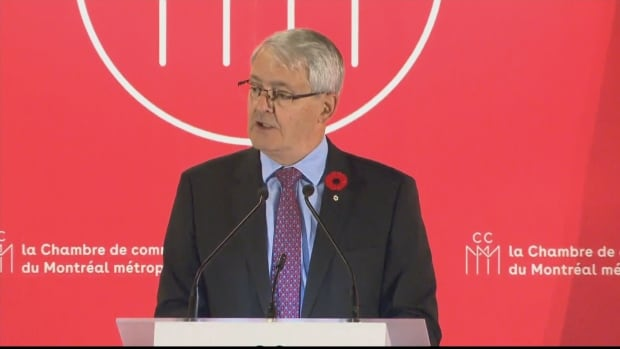 Transport Minister Marc Garneau outlined measures the government will take to make air travel more affordable and less frustrating during a speech to the Montreal Chamber of Commerce Thursday, Nov. 3, 2016.