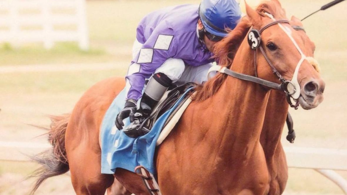 Century Mile horse racing track near Edmonton airport gets AGLC approval