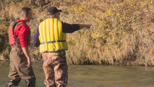 trout count