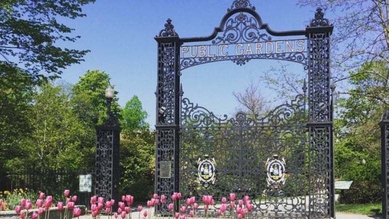Merveilleux Let It Snow: Halifax Public Gardens To Stay Open For Winter ...