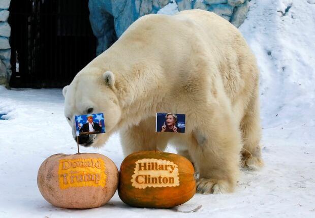 USA-ELECTION/RUSSIA-ZOO