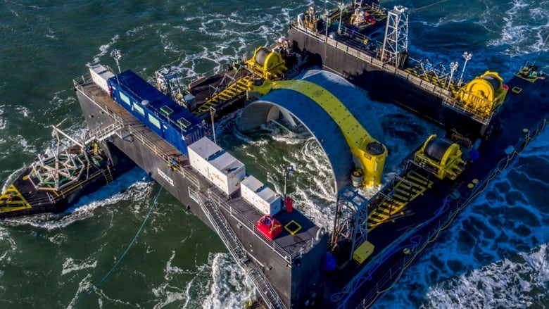 an environmental report about the tidal power in the bay of fundy in nova scotia - what are the potential / expected environmental impacts of a small-scale tidal  fundy in the waters of both nova scotia  tidal power in the bay of fundy 4.