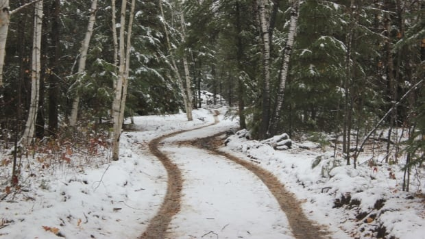 This trail through a forest in western Quebec will soon be home to skating as of winter 2016-17.