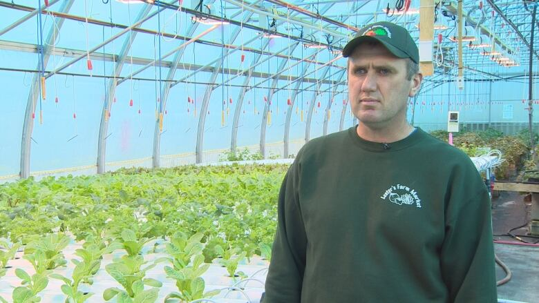 Chris Lester, partner in Lester's Farm, hydroponic