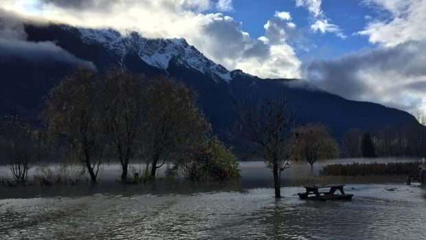 North Arm Farm in Pemberton, B.C., is one of several properties affected by flooding in the Sea-to-Sky region.