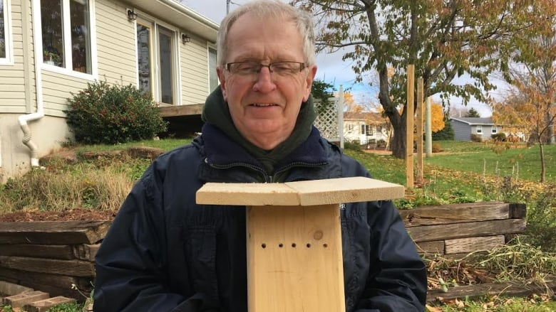 Build A Backyard Bee House In 4 Easy Steps Cbc News