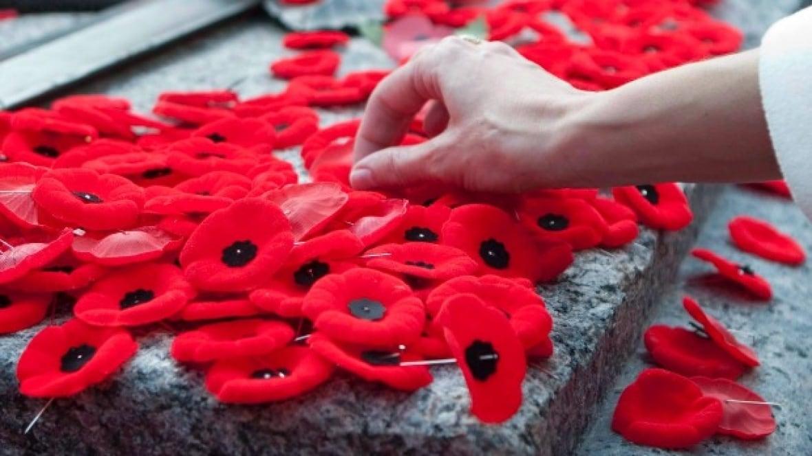 poppy New Brunswick remembers: Remembrance Day 2017