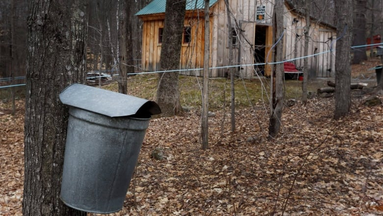 9d259a3d188 Reputed ringleader in  18.7M maple syrup heist found guilty