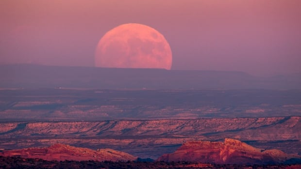 Tuesday marks this year's 'full pink moon,' a name given to to April's full moon.