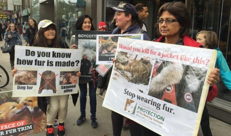 canada goose fur debate