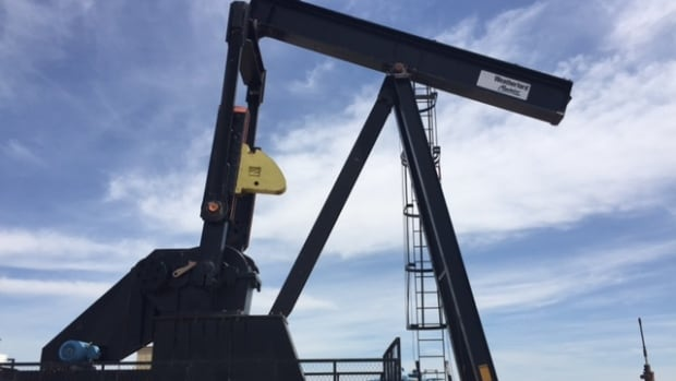 The oilpatch slump has left in its wake tens of thousands of abandoned oil wells, like this one near Three Hills, Alta. Some industry players have an idea to get people back to work, and they're looking for help from the federal government.