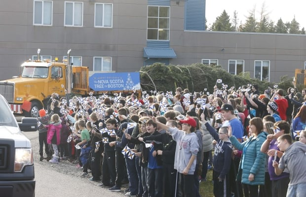 Students at Tamarac Elementary School in Port Hawkesbury cheer for the Boston Christmas tree on its