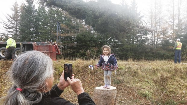 Cait-Lynn Whysote stands on the stump from this year's Nova Scotia tree for Boston as her grandfather Rod Philips takes a photo.