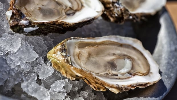 Lobsters are P.E.I.'s biggest export to China, but Raspberry Point would like to make oysters a contender.