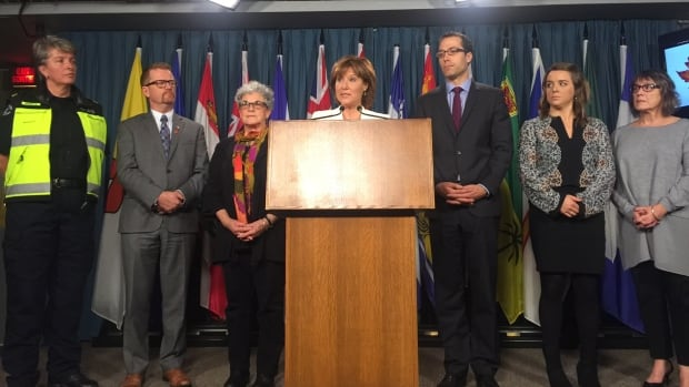 B.C. Premier Christy Clark, centre, is joined by advocates in Ottawa to discuss talks with federal officials about B.C.'s opioid crisis. With Clark are, from left, paramedic Marilyn Oberg, B.C. Health Minister Terry Lake, Leslie McBain, who lost her son to an overdose two years ago, Dr. Evan Wood, interim director of B.C.'s Centre on Substance Use, recovery advocate Mikaela Mamer and Judy Robertson, whose stepson is currently undergoing treatment for addiction.