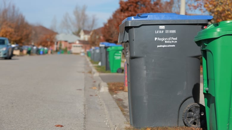 Peel Residents Wonder Why No Contingency In Place For Garbage Strike Cbc News