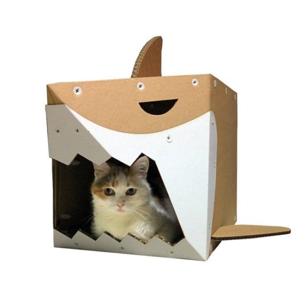 shark cardboard box