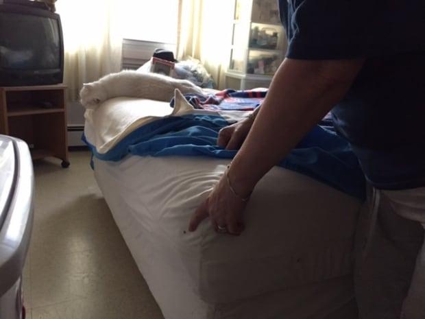 Bedbug on Jessau's mattress