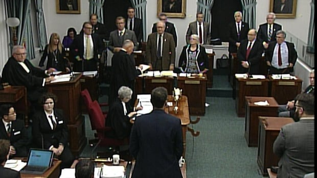 The entire Liberal Caucus plus three PCs voted against the motion to bring in mixed member proportional representation for 2019.