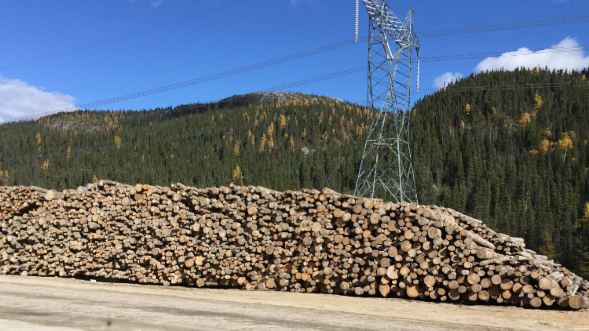 Thousands of logs left to rot at Hydro-Québec site on North Shore