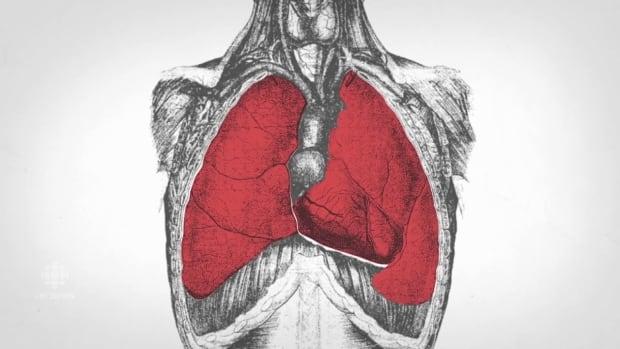 fentanyl-lungs-explainer