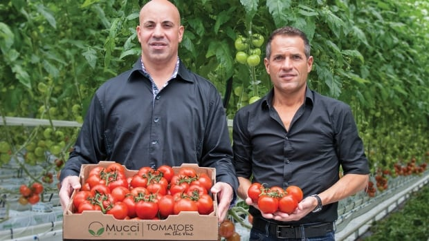 Bert Mucci, right, of Mucci Farms in Kingsville, is expanding its operation to Ohio because of rising hydro costs in Ontario.