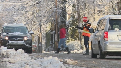 Schools closed in several B.C. districts as snow falls