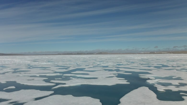 Cracked windows, shaking reported after High Arctic