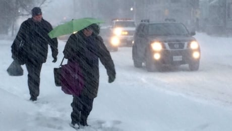 Poor road conditions force some schools to close in eastern New Brunswick thumbnail